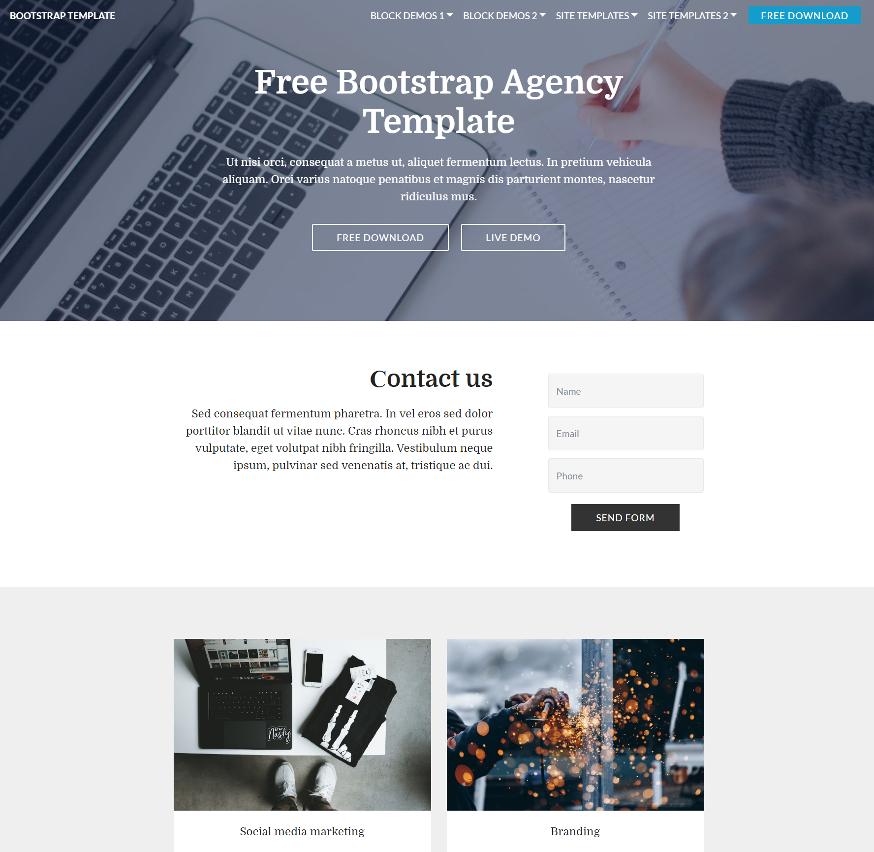 CSS3 Bootstrap  Agency Templates