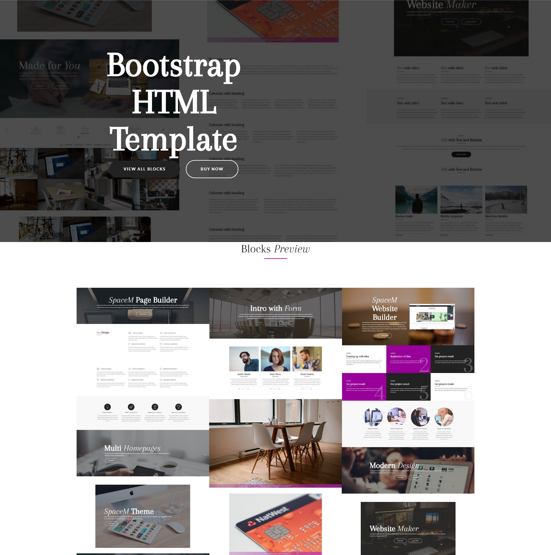Free Download Bootstrap SpaceM Themes