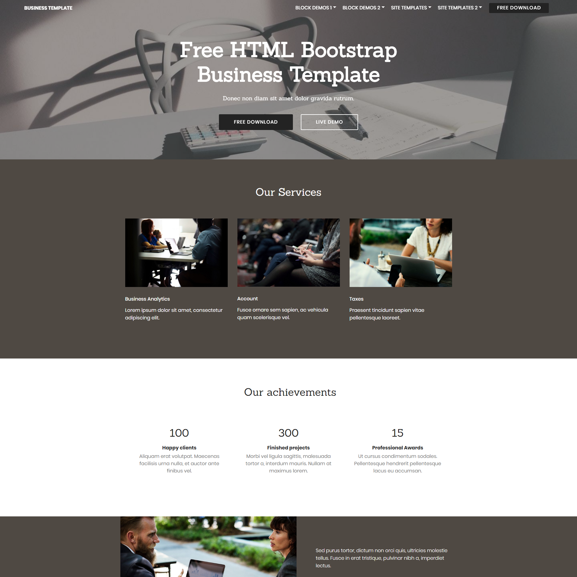 CSS3 Bootstrap Busines Templates
